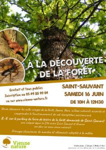 À la découverte de la forêt @ Saint-Sauvant