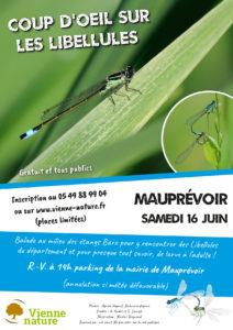 Coup d'œil sur les Libellules @ Mauprévoir | Mauprévoir | Nouvelle-Aquitaine | France