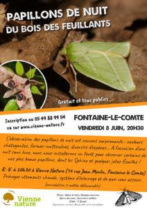 Papillons de nuit du bois des Feuillants @ Vienne Nature, Fontaine-le-Comte | Fontaine-le-Comte | Nouvelle-Aquitaine | France