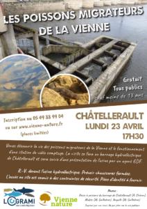 Les poissons migrateurs de la Vienne @ Châtellerault