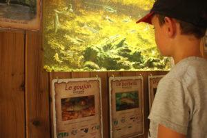 Aquariums de Roches-Prémarie @ Roches-Prémarie-Andillé   Roches-Prémarie-Andillé   Nouvelle-Aquitaine   France