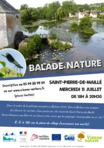 Balade Natura 2000 @ Saint-Pierre-de-Maillé | Saint Pierre de Maille | Centre-Val de Loire | France