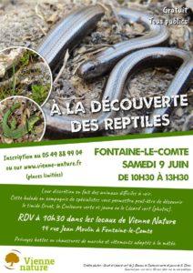 À la découverte des Reptiles