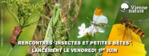 """Rencontre """"insectes et petites bêtes"""" @ Vienne Nature"""