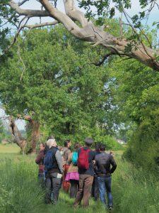 La nature près de chez vous @ Romagne