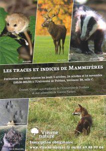 Formation sur les traces et indices des Mammifères, séance3 @ Université de Poitiers