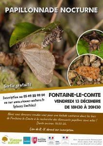 Papillonnade nocturne @ Fontaine-le-Comte