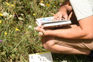 Initiation à la botanique 4/4 @ Fontaine-le-Comte